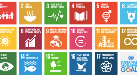 United Nations adopt Sustainable Development Goals