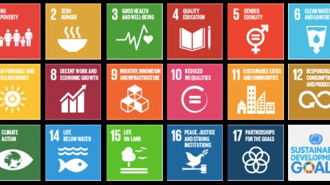 United Nations adopt Sustainable Development Goals